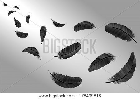 Feathers Vector Set In A 3D Style. Icons Feathers Isolated On A Light Background. Collection Of Silh