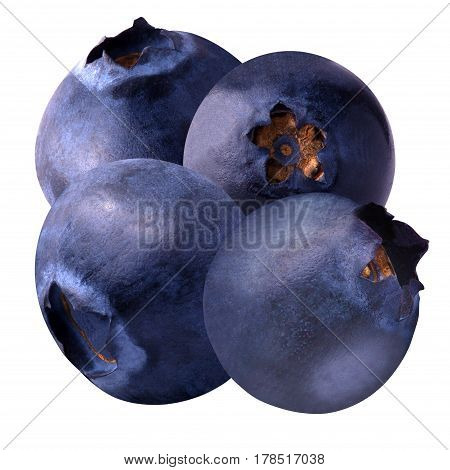 Isolated fruits. Four blueberries isolated on white background as package design element. Healthy eating.