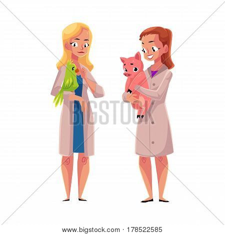 Two women, female veterinarians, vets in medical coats holding parrot and pig, cartoon vector illustration isolated on white background. Female vets, veterinarian doctors, birds and farm animals