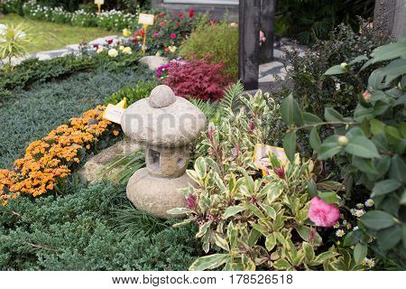 the peaceful zen rock garden with papyrus plant