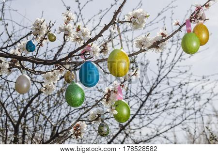 Easter Egg Hanging On A Tree