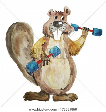 Beaver with dumbbells. Character in the style of cartoons. Illustration of a watercolor by hand on a white background. Element of design. Vector image.