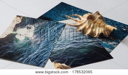 Shells and pictures with the images of the sea on white surface