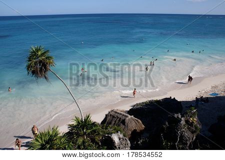 Beach landscape with palms in Yucatan, Mexico