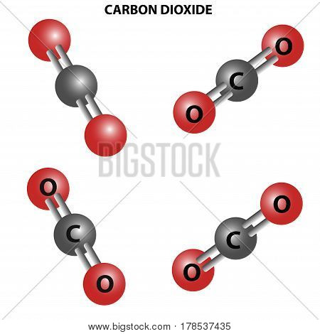 CO2 Carbon dioxide molecule. Chemical Structure.Four views
