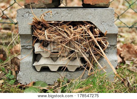 detail of insect hotel for small invertebrates with straws and other material in the breeze block