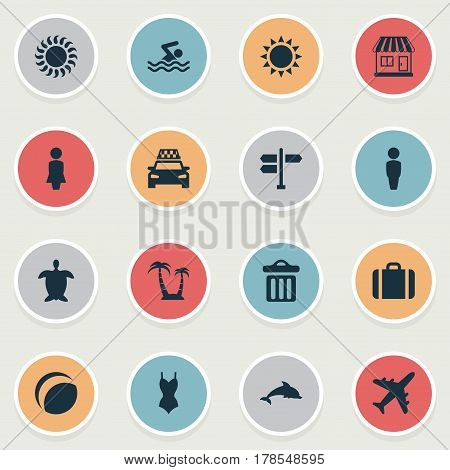 Vector Illustration Set Of Simple Beach Icons. Elements Palm, Sunlight, Male And Other Synonyms Gentleman, Tortoise And Beachwear.