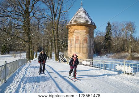 SAINT PETERSBURG, RUSSIA - FEBRUARY 06, 2017: People are driving on the finnish sledge in Pavlovsk park a sunny February day
