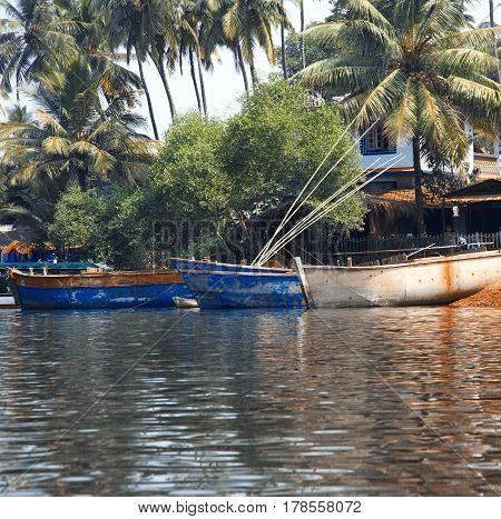 Fishing boats at the pier in palm jungles. Goa India