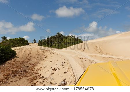 Sand dunes and palm trees on buggy trip of Mangue Seco Jandaira Bahia Brazil