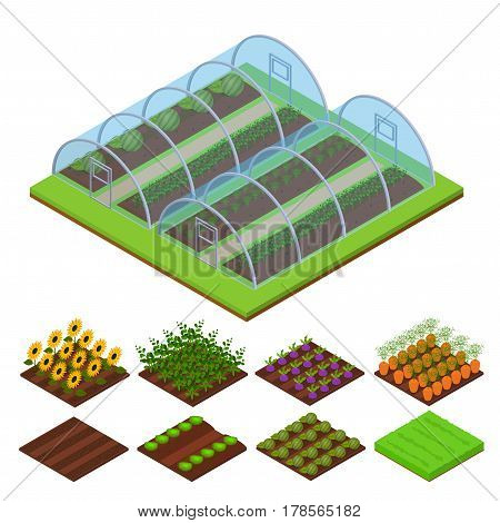 Greenhouse and Part Set Isometric View Horticultural Conservatory for Plant, Vegetable and Flower Vector illustration