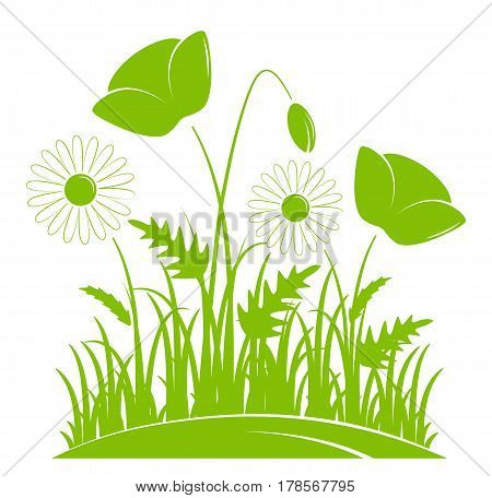 vector corn poppies and daisies in grass isolated on white background