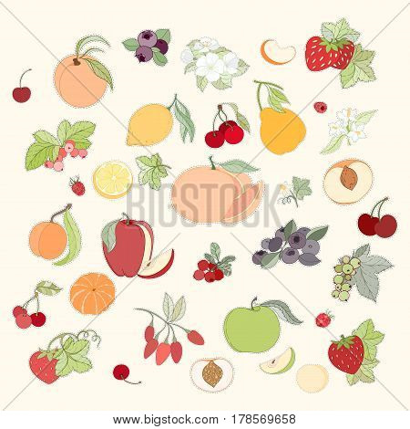 Set of hand drawn vector illustration of lable of fruits and berries. apple, apricot, orange, peach, pear on light background can be used for banner template, card, flyer, sale, website, menu, cover