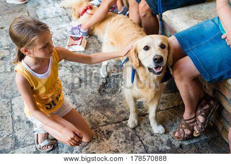 Little Girl stroking dog - golden retriever - overcoming fear of dogs