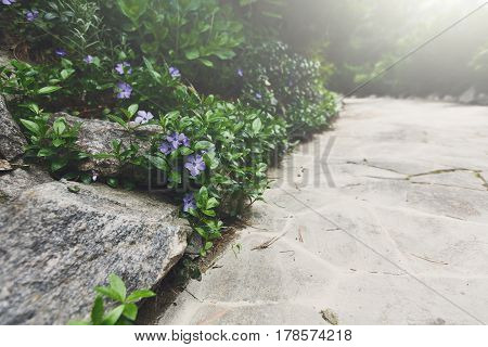 Beautiful landscape design, south resort park. Garden path in stone tiles in sunlight. Modern landscaping. Flare effect
