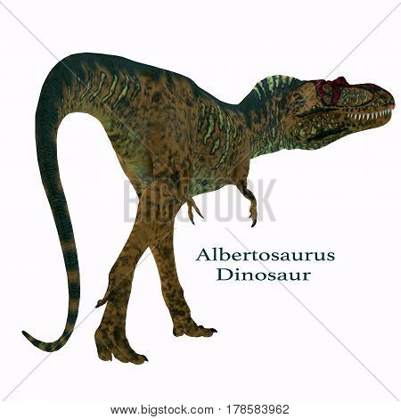 Albertosaurus Dinosaur Tail with Font 3d illustration - Albertosaurus was a carnivorous theropod dinosaur that lived in North America in the Cretaceous Period.
