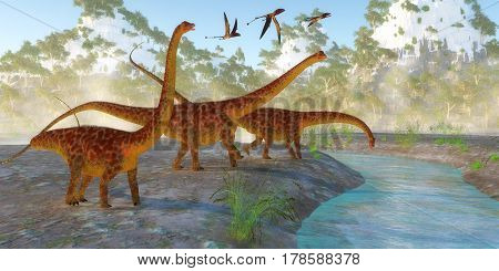 Diplodocus Dinosaur Morning 3d illustration - Diplodocus dinosaurs come down to a river for a morning drink as a flock of Dimorphodon reptiles fly nearby.