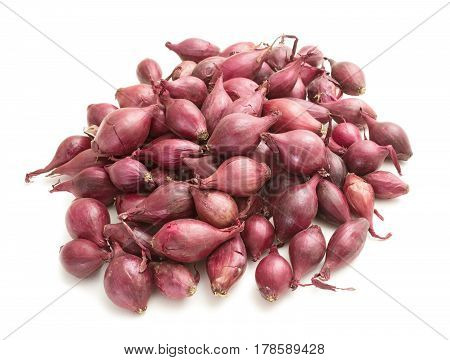 Handful of small onions intended for planting in the garden