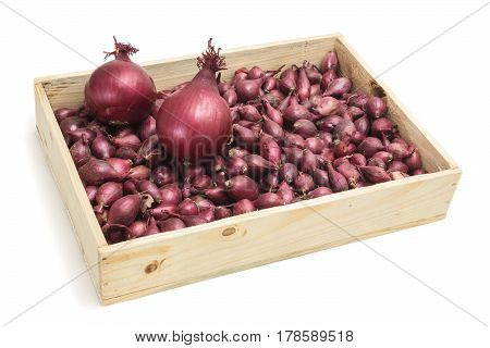 Drawer filled with small onions intended for planting in garden