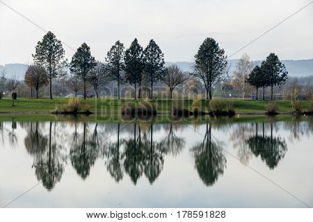 trees reflecting in the lake