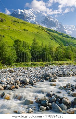 Summer landscape with snowy peaks. Mountain river in the valley. Sunny day. Zemo Svaneti, Georgia
