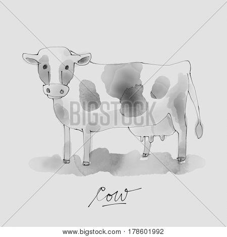 Cow Watercolor illustration