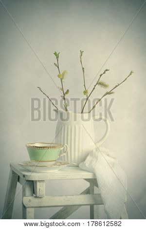 Spring still life with Catkin sprigs in ceramic jug with cup and saucer on step ladder
