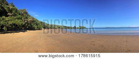 Coopers Beach Northland New Zealand
