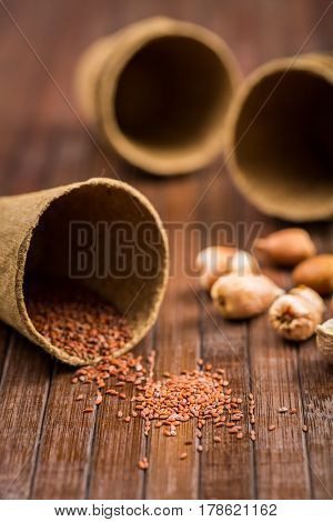 Seeds and onions on wooden table