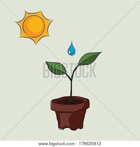 planting process in pots with sun and water drop to grow drawing sketch in color vector