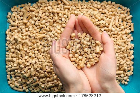 Female hands holding cat litter