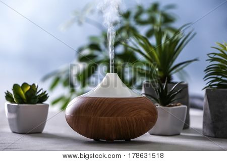 Aroma oil diffuser and succulents on blurred background