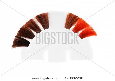 Palette of hair colors samples on white background