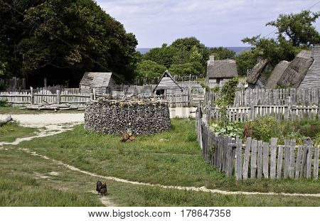 Wide view of pathways fences and old gray wooden sheds with a lone rooster in the foreground in the pilgrim village at Plimoth Plantation, Plymouth, Massachusetts, on an overcast but bright day in September.
