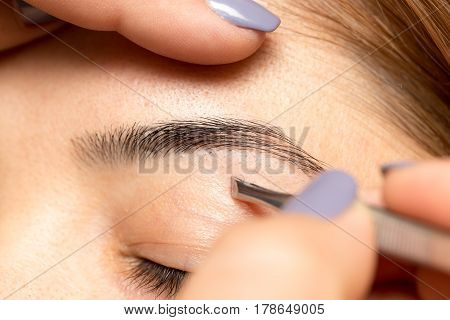 Grooming the eyebrows in a beauty salon .