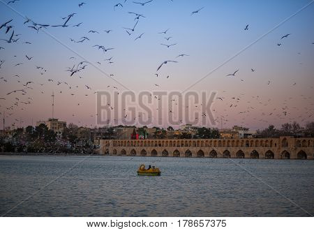 Isfahan, Iran - Circa February 2016 - A shot of flying birds above Zayandeh River overlooking Si-o-seh pol in Isfahan Iran