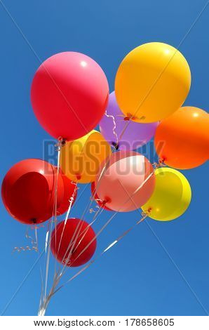 bunch of multicolored balloons in the city festival on blue sky background