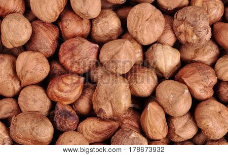 Hazelnut background. Healthy eating vegetarian nut food hazelnut.