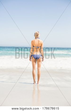 Rear view of woman in bikini standing on the beach on a sunny day