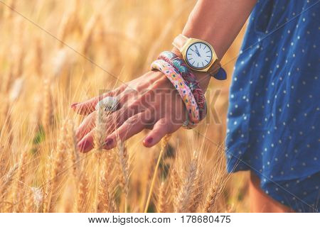 Girl in a wheat-field. Shallow focus on the hand.