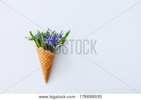 Close Up Bouquet Of White And Blue Primrose In The Waffle Cone On The White Background. Top View. Fr