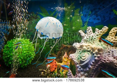 Beautiful White Jellyfish In The Water