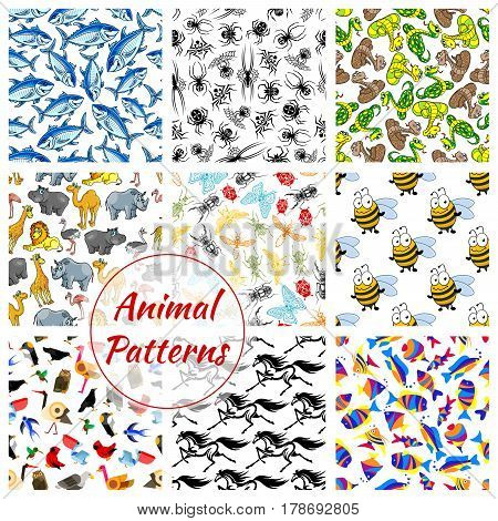 Animal, bird, fish and insect seamless patterns. Lion and horse, owl, butterfly and snake, tuna and bee, eagle and spider, giraffe and ostrich, dragonfly and penguin, rhino, hippo, dove and camel