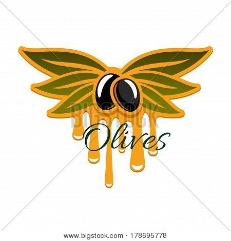 Olives with oil splash icon. Black olive fruit with green leaves and flowing golden drops of organic olive oil. Healthy vegetarian food packaging, oil label, italian and greece cuisine symbol design