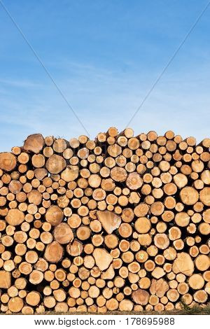 Photo Of A Pile Of Natural Wooden Logs