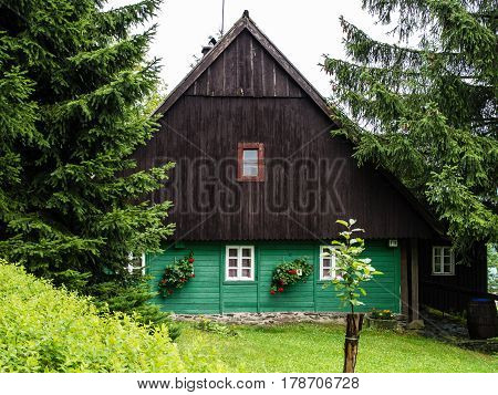 Traditional mountain chalet, cottage or hut made of wood surrounded by spruce trees, painted green and brown with lawn in front of, relaxing vacation, local accommodation in Czech republic, central Europe, Orlicke hory