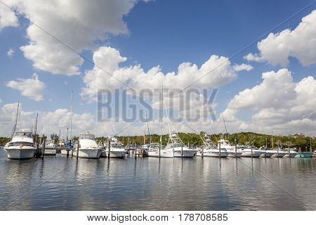 Yachts and fishing boats at the marina in Coral Gables. Miami Florida United States