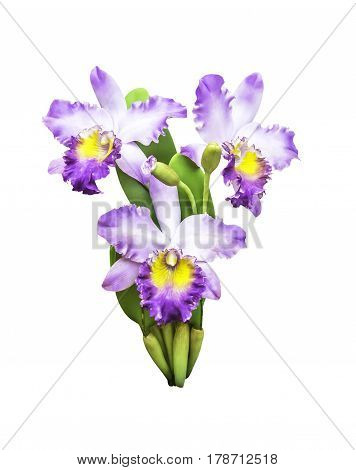 Artificial bouquet orchid flower isolated on white backgrund with clipping path