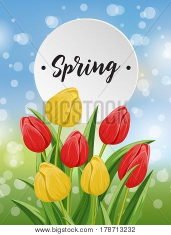 Spring banner with yellow and red blooming tulip flower on blurred background vector illustration. Floral decorated spring design for holiday, romantic celebration, nature feast congratulation card