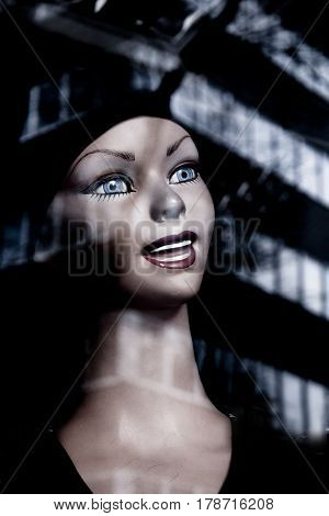 Woman head manikin. Smiling expresion. Happy look